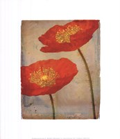 Fiori Fine Art Print