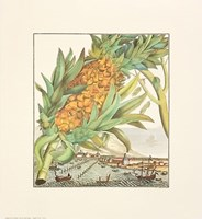 Pineapple With Ships Fine Art Print