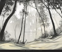 Black Forest Fine Art Print