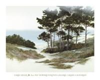 Sand Hill Fine Art Print