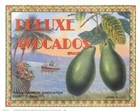 Deluxe Avacados Fine Art Print