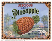 Luscious Pineapple Fine Art Print