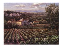 Vino Rosso Fine Art Print