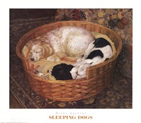 Sleeping Dogs Framed Print