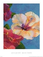 Apricot Brandy Fine Art Print