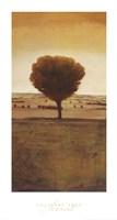 Solitary Tree Fine Art Print