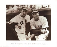 Ted Williams & Joe DiMaggio, 1951 Framed Print