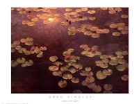 Lilies and Light Fine Art Print