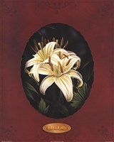 The Lily I Fine Art Print
