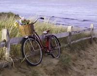 Beach Petals Fine Art Print