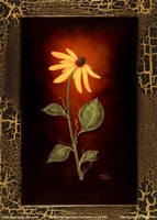 Blooming Daisy Fine Art Print