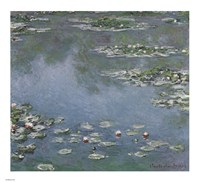 Waterlilies Fine Art Print