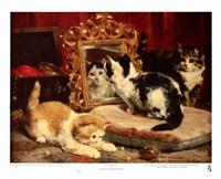Kittens, 1893 Fine Art Print
