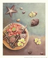 Zen Contentment I Fine Art Print