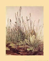 Tall Grass Fine Art Print