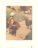 Baa, Baa, Black Sheep Framed Print