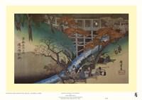 Maple Leaves at Tsutenryo Fine Art Print