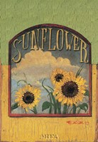 Three Sunflowers Fine Art Print