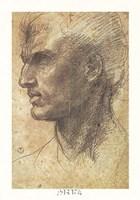 Head of an Apostle Fine Art Print