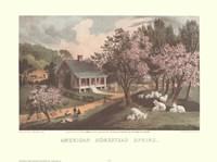 American Homestead Spring Framed Print