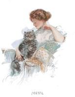 Fashion Modes - Persian Cat Framed Print