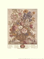 June/Twelve Months of Flowers, 1730 Fine Art Print