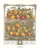 April/Twelve Months of Fruits, 1732 Fine Art Print