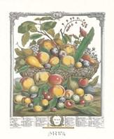 July/Twelve Months of Fruits, 1732 Framed Print