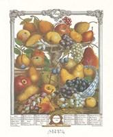 November/Twelve Months of Fruits, 1732 Framed Print