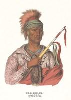 Ne-O-Mon-Ne, an Ioway Chief Framed Print