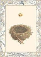 Woodland Nest IV Framed Print