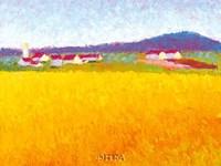 Fields of Gold Fine Art Print
