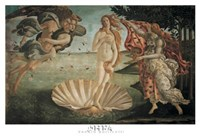 Birth of Venus Fine Art Print