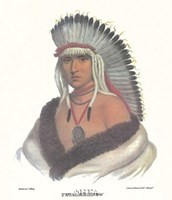 A Pawnee Brave Framed Print