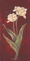 Tulips on Cinnabar I Fine Art Print