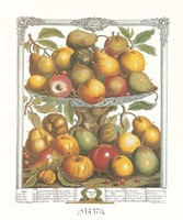 February/Twelve Months of Fruits, 1732 Fine Art Print