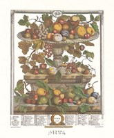 June/Twelve Months of Fruits, 1732 Framed Print
