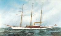 Sultana Fine Art Print