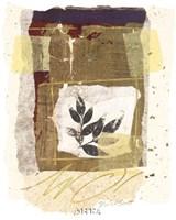 Leaf Study III Fine Art Print