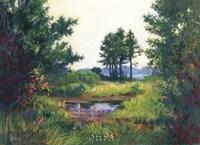 Salt Marsh Fine Art Print