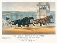 Great Double Team Trot Fine Art Print