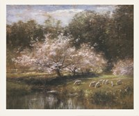 Sheep Grazing Under Apple Blossoms Framed Print