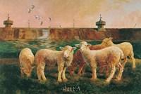 Five Lambs, 1988 Fine Art Print