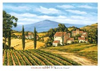 Road to the Vineyard Fine Art Print