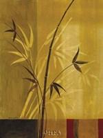 Bamboo Impressions I Fine Art Print