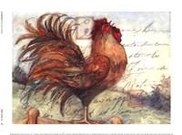 Le Rooster I Framed Print