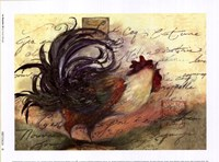 Le Rooster III Framed Print