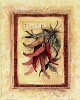 Tuscan Garden III Fine Art Print