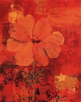 Marigolds III Fine Art Print