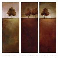 Trees Dreaming Fine Art Print